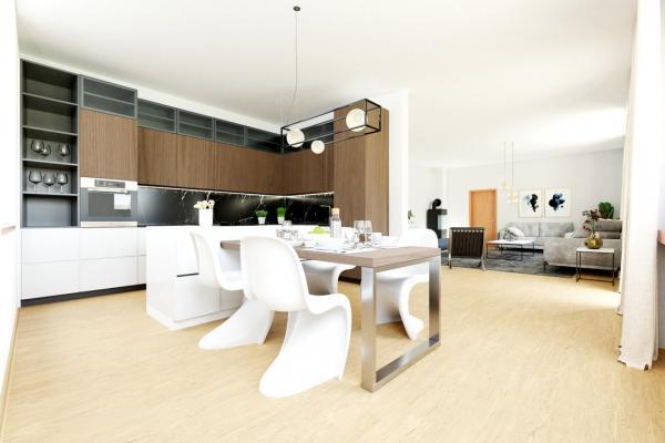 Küche mit Blick ins Wohnzimme